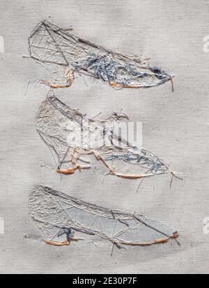 Côté marin de la couture broderie de talons Banque D'Images
