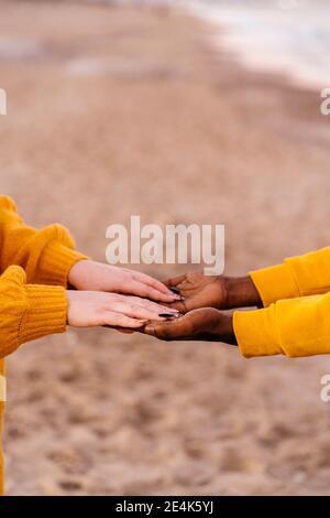 Gros plan des mains d'homme et de femme accrochées à la plage