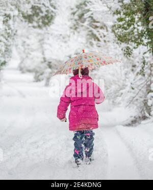 Kidderminster, Royaume-Uni. 24 janvier 2021. Météo au Royaume-Uni : les chutes de neige matinales surpassent les résidents du Worcestershire avec de la neige épaisse causant une couverture blanche en hiver entre 8 h et 10 h. Little Phoebe est enveloppé bien à la marche avec sa mère en appréciant soigneusement le pays merveilleux de l'hiver. Crédit : Lee Hudson/Alay Live News Banque D'Images