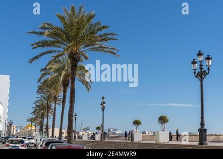 Cadix, Espagne - 16 janvier 2021 : vue sur l'Avenida Campo del sur et la promenade du centre-ville de Cadix