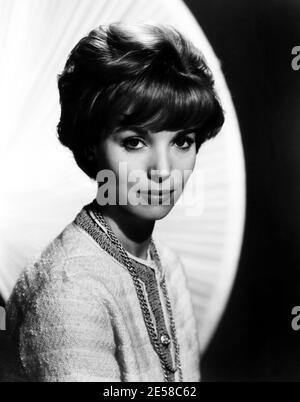 1962 , USA : l'actrice italienne ELSA MARTINELLI ( 1935 - 2017 ) dans les productions hollywoodiennes , pubblicity encore pour le film HATARI ! - Paramount Pictures Corporation - FILM - CINÉMA - FILM - portrait - ritrato - COCO CHANEL robe - catena d'oro - chaine dorée --- Archivio GBB