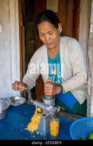 Lady Hand pressant du jus frais sur le circuit Annapurna, Népal Banque D'Images