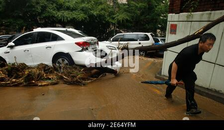 A man walks under a fallen tree, next to cars damaged by landslide and heavy rainfall at a village in Seoul July 27, 2011. Wild weather has battered the peninsula since late Tuesday, causing widespread flooding and transport delays, while the share price of insurers fell on fears that damage costs would run into millions of dollars.  REUTERS/Truth Leem (SOUTH KOREA - Tags: DISASTER ENVIRONMENT)