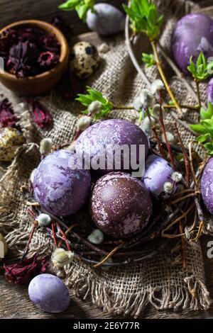 Jaune d'œuf de Pâques violet. Les œufs faits maison sont peints avec un colorant naturel provenant de fleurs d'hibiscus séchées sur une table rustique.
