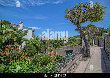 Magnifique sentier plein d'arbres et de fleurs sur l'île de Capri. Entrée typique de la maison avec fleurs fleuries sur les rues étroites de l'île de Capri, Italie