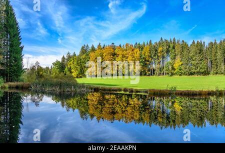 Allemagne, Bavière, haute-Bavière, pays de Tölzer, Dietramszell, district de Humbach, étang dans la région de FFH près de Humbach