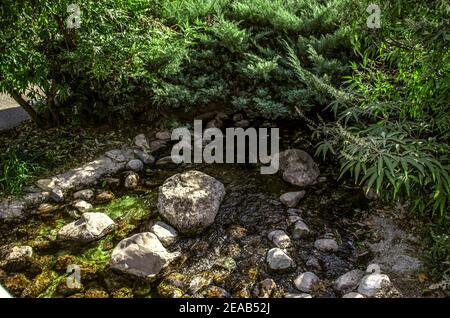 Un ruisseau artificiel qui coule à travers tout le parc avec rapides et plantes ornementales des rocheuses qui poussent le long des rives