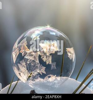 gros plan de la bulle de savon gelé dans la neige