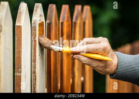 Peinture de clôture en bois par coloration de bois. Pinceau pour main mâle. Réparer l'ancienne clôture de piquetage à l'arrière-cour