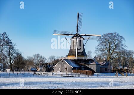 Pelmolen Ter Horst, Rijssen couvert de paysage enneigé à Overijssel pays-Bas, moulin à vent historique en hiver avec paysage blanc. ancien moulin à vent en bois en Hollande
