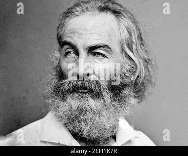 WALT WHITMAN (1819-1892) poète, essayiste et journaliste américain photographié par Matthew Brady vers 1875.