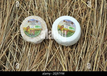 Élevage de chèvres et production de produits biologiques à partir de lait de chèvre