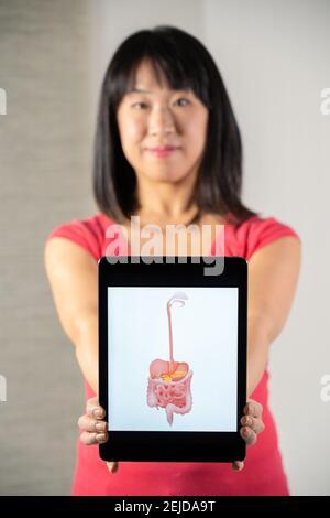 Femme tenant l'écran avec le dessin du tube digestif