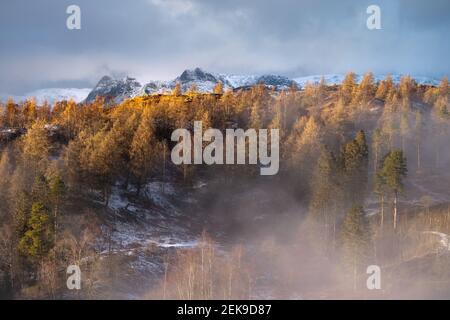 Paysage alpin doré avec montagnes enneigées et ciel spectaculaire. Pris un après-midi d'hiver à Tarn Hows en regardant les Langdale Pikes.