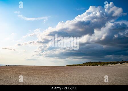 Dunes de sable de la plage de Blavand au Danemark