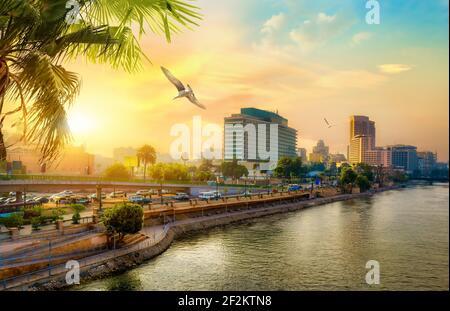 Vue sur le Nil à partir du Caire moderne