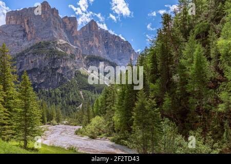 Ruisseau de montagne dans les Alpes Dolomites italiennes entouré de frais forêt