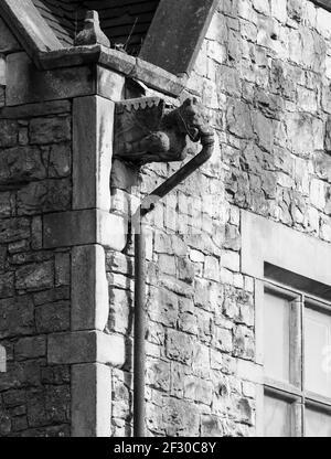 Gargouille en pierre dans un bâtiment victorien