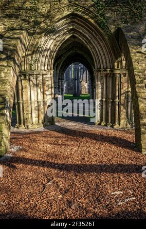 Les ruines de l'abbaye de Margam, le parc national de Margam, la Maison du Chapitre. Neath Port Talbot, pays de Galles, Royaume-Uni