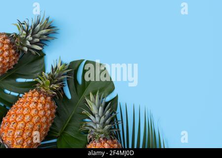 Vue de dessus de l'ananas frais avec palmier tropical et feuilles de monstère sur fond bleu de table.