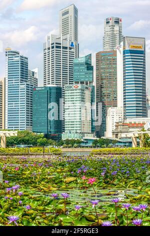 Vue de Singapour depuis l'hôtel Marina Bay Sands, avec fleur de Lotus au premier plan.