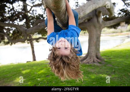 Petit garçon sur une branche d'arbre. Escalade et pendaison de l'enfant. Portrait d'un bel enfant dans le parc au milieu des arbres. Sport extrême pour les enfants. L'enfant monte un arbre