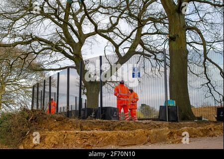 Great Missenden, Royaume-Uni. 3 avril 2021. HS2 a détruit un certain nombre d'arbres de chêne emblématiques et très appréciés et d'anciennes haies le long de l'historique Sunken Leather Lane avec plus de HS2 abattage pour suivre une route de transport temporaire. HS2 la sécurité est dans les champs à côté des chênes 24/7 et intimidant les résidents locaux et les membres du public. La liaison ferroviaire High Speed 2 de Londres à Birmingham est en train de sculpter une énorme cicatrice laid à travers les Chilterns qui est un AONB. Plus de 41 000 personnes ont signé une pétition pour sauver les chênes de Leather Lane. Crédit : Maureen McLean/Alay Live News
