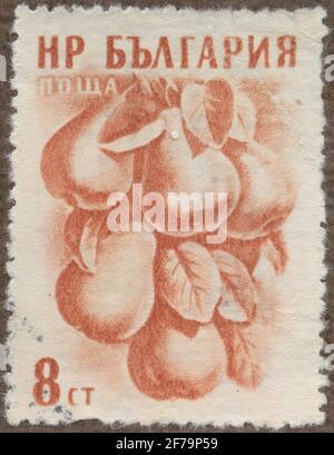 Timbre de la cession de la philatéliste de Gösta Bodman, commencé 1950.le timbre de Bulgarie, 1957. Motifs de poires. 'Série de fruits'.