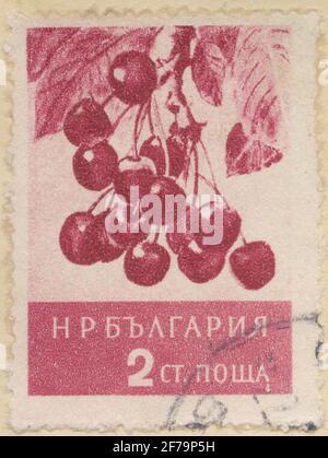 Timbre de la cession de la philatéliste de Gösta Bodman, commencé 1950.le timbre de Bulgarie, 1956. Motifs en verre de cerisier.