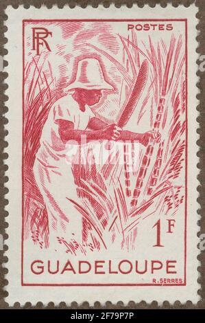 Timbre de la cession de la philatéliste de Gösta Bodman, commencé 1950.le timbre de la Guadeloupe, 1947. Motifs de la récolte de sokerrör.