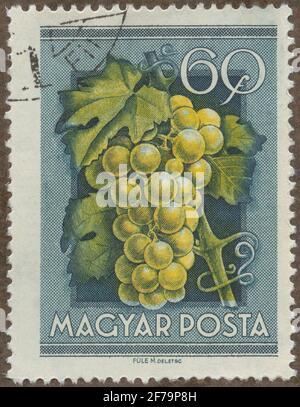 Timbre de Gösta Bodman de la philatéliste cession, a commencé en 1950.le timbre de Hongrie, 1954. Motifs de MODU.
