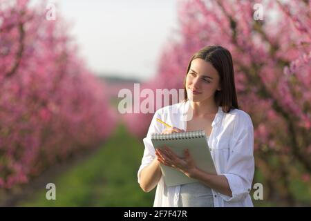 Bonne femme à dessiner sur un carnet dans un champ fleuri rose au printemps