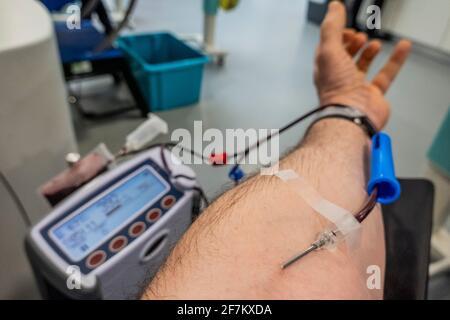 Londres, Royaume-Uni. 8 avril 2021. Un don de sang au Centre des donneurs du West End - le sang est toujours requis par le NHS et donc les centres de dons sont encore ouverts avec une distance sociale accrue. Crédit : Guy Bell/Alay Live News