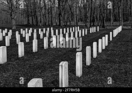 Des rangées de pierres de tête pour les anciens combattants militaires enterrées au cimetière national de fort Custer, Augusta, Michigan, États-Unis