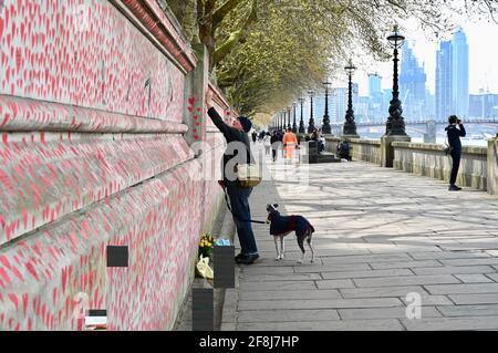 Londres. ROYAUME-UNI. 14 avril 2021, le public continue de se rendre au mur commémoratif de la COVID pour les victimes du coronavirus qui sont décédé l'année dernière. Hôpital St Thomas, Londres