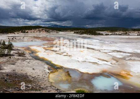 Les sources d'eau chaude et les geysers chauffent sous un ciel houleux dans le parc national de Yellowstone.