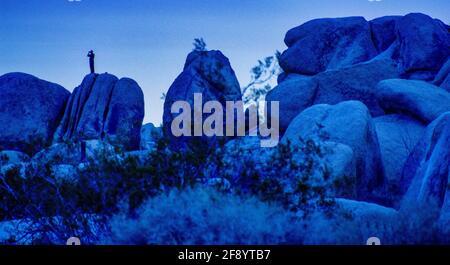 Formations rocheuses au crépuscule, Parc national de Joshua Tree, Californie, États-Unis