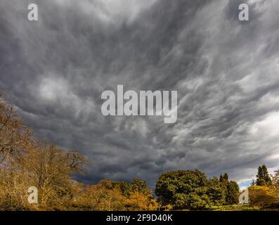 Ciel spectaculaire avec des nuages de tempête gris au-dessus de RHS Garden, Wisley, Surrey, sud-est de l'Angleterre au printemps, avant de fortes pluies