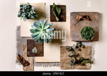 Mise en page créative géométrie abstraite carrés vides par nature matériaux papier, textile, bois, pierre avec plantes succulentes. Pose à plat. Espace pour n'importe quel produit