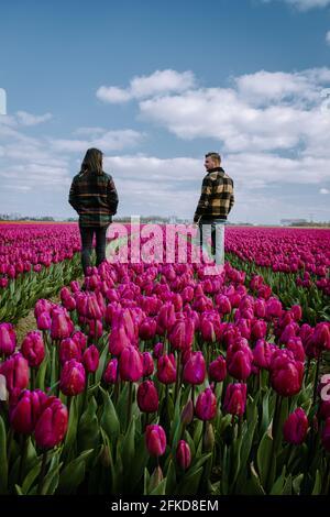 Vue aérienne des champs de bulbes au printemps, champs de tulipes colorés aux pays-Bas Flevoland au printemps, champs avec tulipes, couple hommes et femme dans champ de fleurs