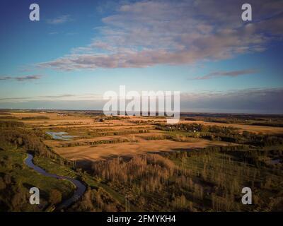 Vue aérienne d'une ferme de seigle de blé jaune et de maïs vert allant à l'horizon. Jour ensoleillé, ciel bleu. Concept d'agriculture et d'agriculture. Ontario, Canada Banque D'Images