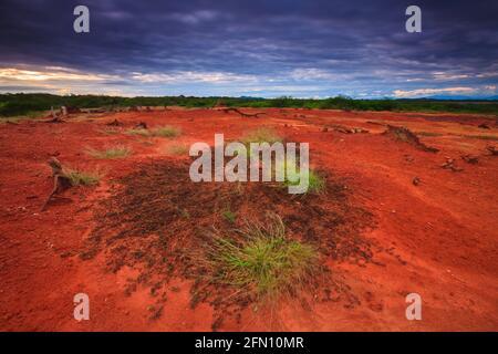 Coucher de soleil et paysage saisissant avec sol rouge humide après les précipitations dans le parc national de Sarigua, province de Herrera, République de Panama, Amérique centrale.
