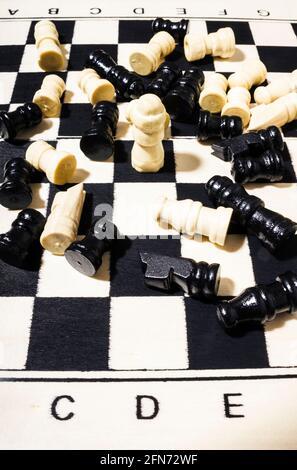 L'art de la vie sur un champion underdog vaincre toute l'opposition d'échecs. Livre de l'année