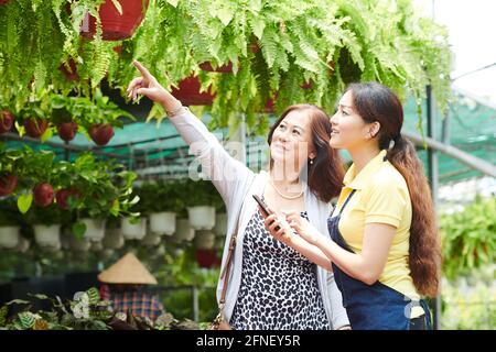 Femme mûre souriante demandant à la travailleuse du centre de jardinage de lui donner fougère dans le pot de suspension