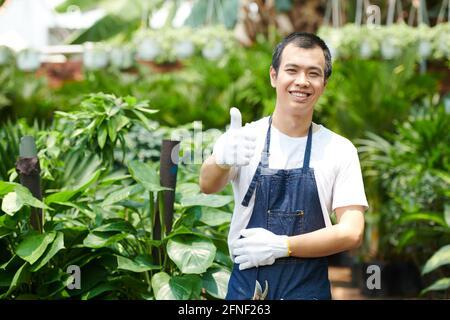 Joyeux jeune ouvrier de serre excité dans le gant de protection montrant le pouce vers le haut et sourire à l'appareil photo