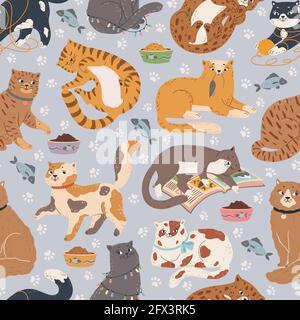 Motif chats sans coutures. Chat mignon dormant, jouant avec des jouets, assis. Dessin animé animal de fond avec chatons drôle de texture vectorielle. Kitty avec boule de fil, souris, dormir sur le livre