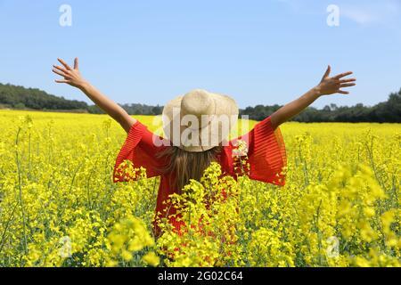 Vue arrière d'une femme excitée dépassant les bras célébrant le printemps dans un champ de fleurs jaunes