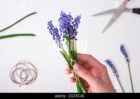 Les mains des femmes collectent un bouquet de muscari bleu en cadeau. Petite entreprise locale Pruning fleurs. Fleuriste en fleuriste. Style écologique. Fleuriste au travail