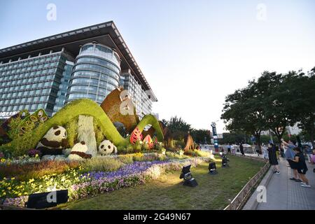 Pékin, Chine. 19 juin 2021. Les gens prennent des photos de décorations florales établies le long de l'avenue Chang'an à Beijing, capitale de la Chine, le 19 juin 2021. Credit: Chen Zhonghao/Xinhua/Alay Live News