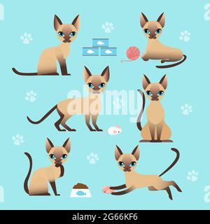 Ensemble d'illustrations vectorielles de chat mignon dans différentes poses. Manger, dormir, s'asseoir et jouer chaton dans un style de dessin animé plat.